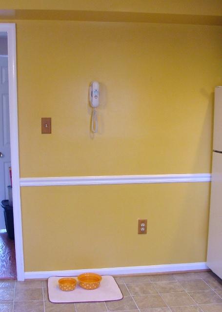 blank wall2