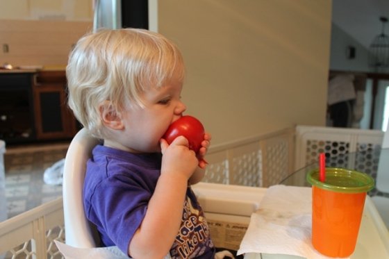 plank break O eats tomato